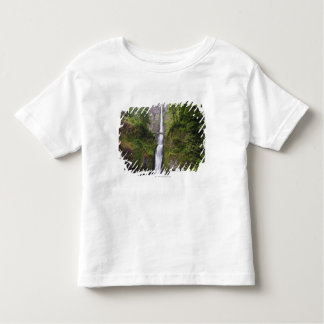 Latourell Falls & Bridge Columbia River Gorge Toddler T-Shirt