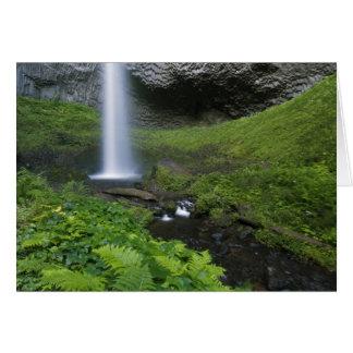 Latourell Falls, Columbia River Gorge, Oregon, Card