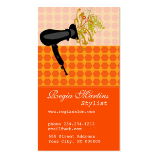 Latticce Work  Hair Stylist  Dryer Blowing Flower Pack Of Standard Business Cards