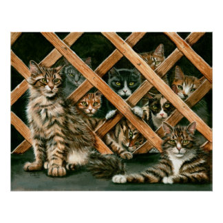 Lattice Fence Cats tuxedo tabby gray Poster