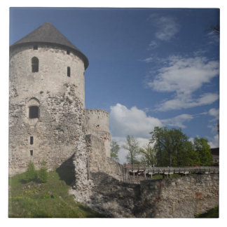 Latvia, Northeastern Latvia, Vidzeme Region, 3 Large Square Tile