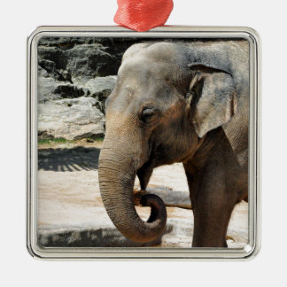 Laughing Asian Elephant Zoo wildlife Metal Ornament