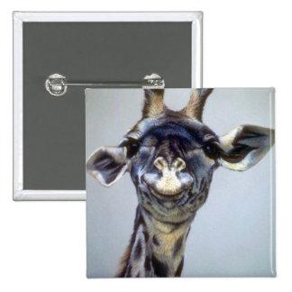 Laughing Giraffe Pinback Buttons