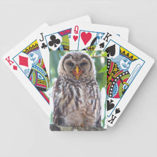 Laughing Owlet Bicycle Playing Cards
