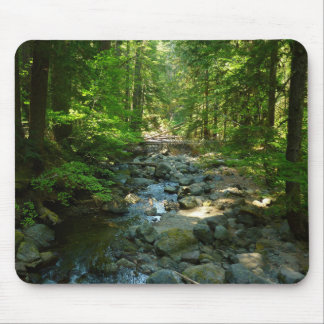 Laughingwater Creek at Mount Rainier National Park Mouse Pad