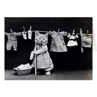 Laundry Day Kitty Card