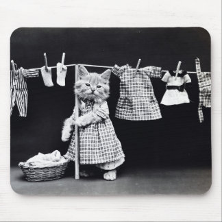Laundry Day Kitty Mouse Pad