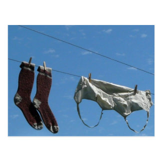 Laundry on the Line Postcard