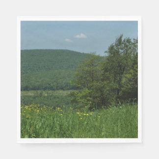 Laurel Highlands Pennsylvania Summer Photography Paper Napkins