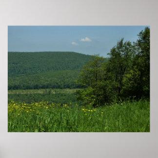 Laurel Highlands Pennsylvania Summer Photography Poster