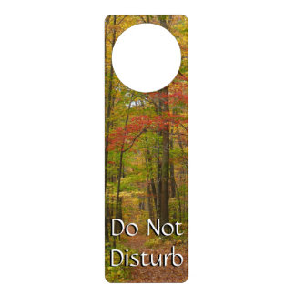 Laurel Hill Trail in Fall Door Hanger