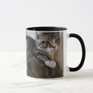Laurie, Larry & Louie Mug