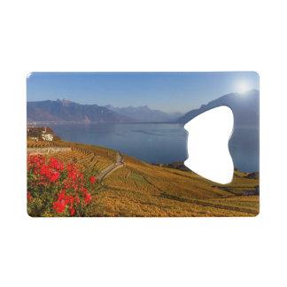 Lavaux region, Vaud, Switzerland