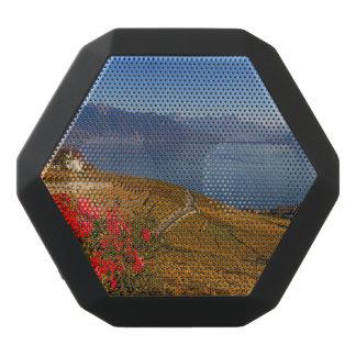 Lavaux region, Vaud, Switzerland Black Bluetooth Speaker