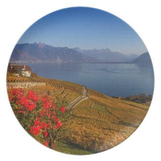 Lavaux region, Vaud, Switzerland Plate