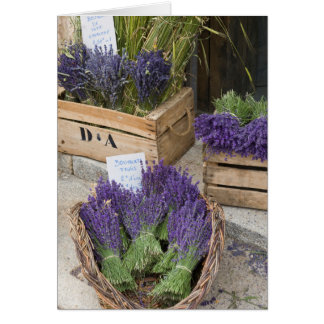 Lavendar for sale, Provence, France Card