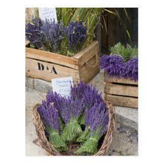 Lavendar for sale, Provence, France Postcard