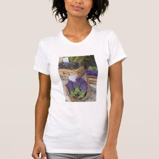 Lavendar for sale, Provence, France T-Shirt
