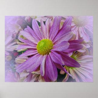 Lavender African Daisy Print