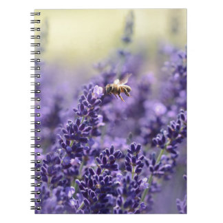 Lavender and Bees Notebook