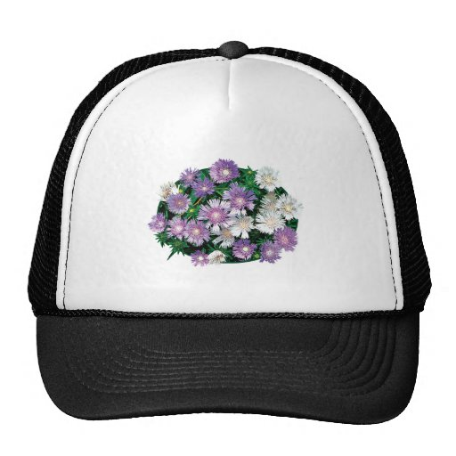 Lavender and White Stokes Asters Hat