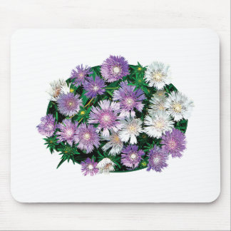 Lavender and White Stokes Asters Mouse Pads