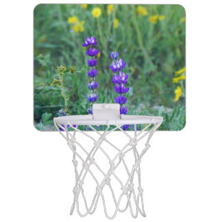 Lavender and Yellow Sunflower Mini Basketball Hoop