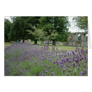 Lavender at Glastonbury Card