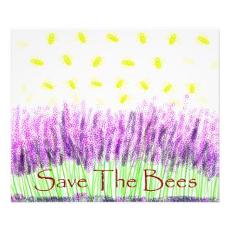 Lavender Bees Photo
