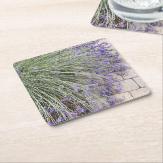 Lavender Blooms Floral Square Paper Coaster