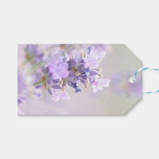 Lavender Bokeh Photographic Gift Tag