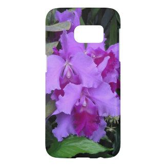 Lavender Catleya Orchids