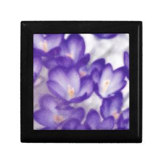 Lavender Crocus Flower Patch Gift Box
