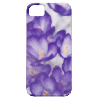 Lavender Crocus Flower Patch iPhone 5 Cases