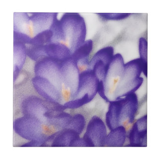 Lavender Crocus Flower Patch Small Square Tile