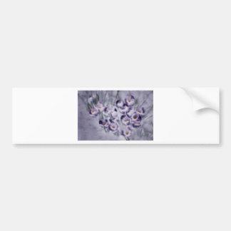 Lavender Crocus Patch Bumper Sticker