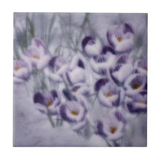 Lavender Crocus Patch Small Square Tile
