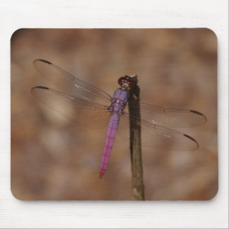 lavender dragonfly mouse pad