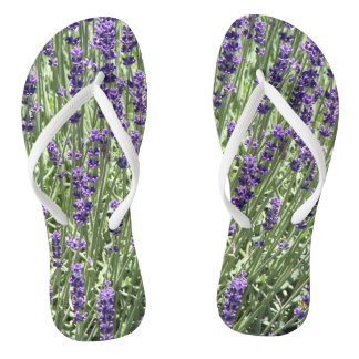 Lavender Field Floral Thongs