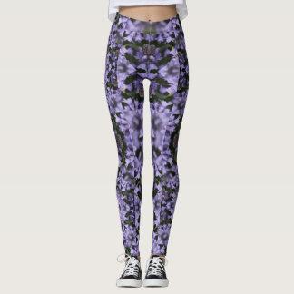 Lavender Field of Dreams Legging