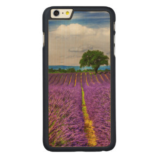 Lavender Field scenic, France Carved Maple iPhone 6 Plus Case