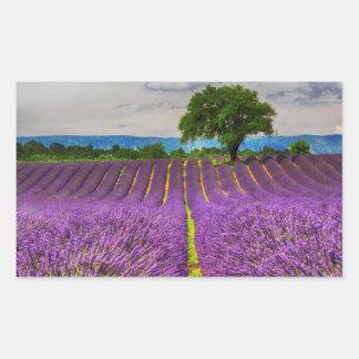 Lavender Field scenic, France Rectangular Sticker
