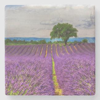 Lavender Field scenic, France Stone Coaster