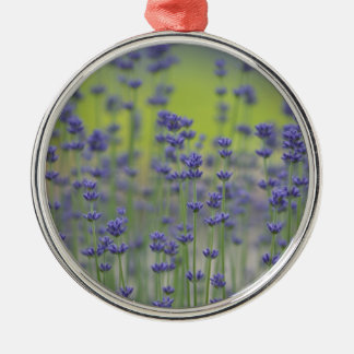 Lavender Fields Silver-Colored Round Decoration