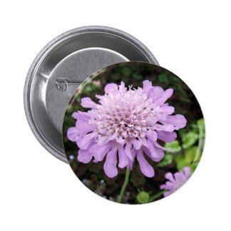 Lavender Flower Scabiosa Buttons