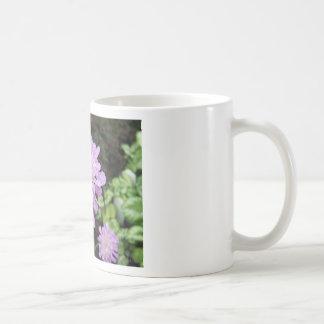 Lavender Flower:: Scabiosa Basic White Mug