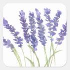 Lavender flowers square sticker
