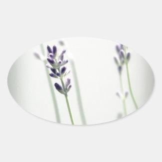 Lavender Flowers Oval Sticker