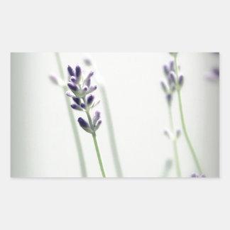 Lavender Flowers Rectangular Sticker