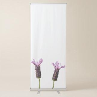 lavender in bloom in the garden retractable banner